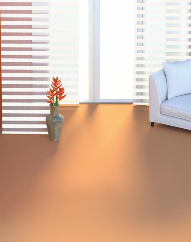 sun collection Flächenvorhang Wohnzimmer Zebra